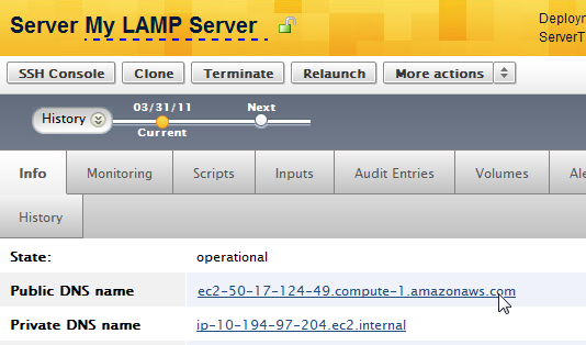 screen-LAMP-Trial-PublicDNS-v1.png